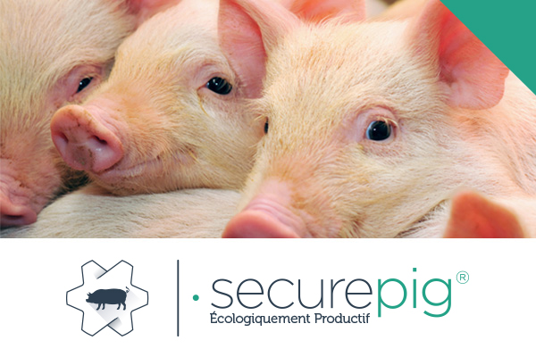 securepig